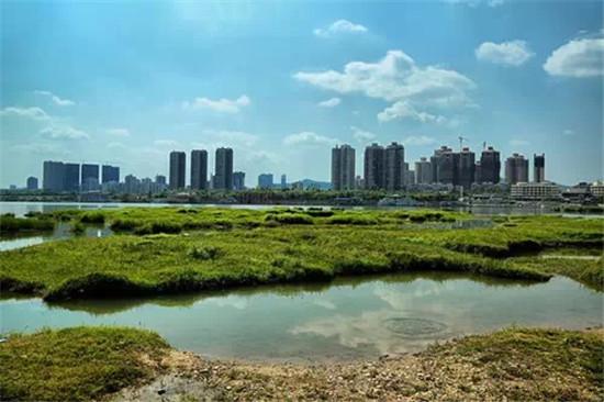 南房网 本地 城市 >> 正文    ▼八尔滩风景区位于南部县西南边沿的大